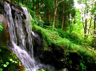 39中庭の滝s.jpg